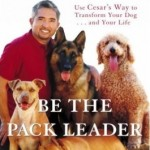 Be_Pack_Leader